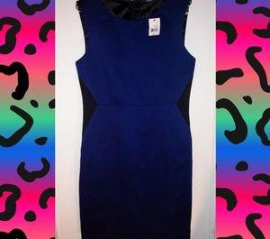 *NWT* Navy blue && black TAHARI penny dress sz10